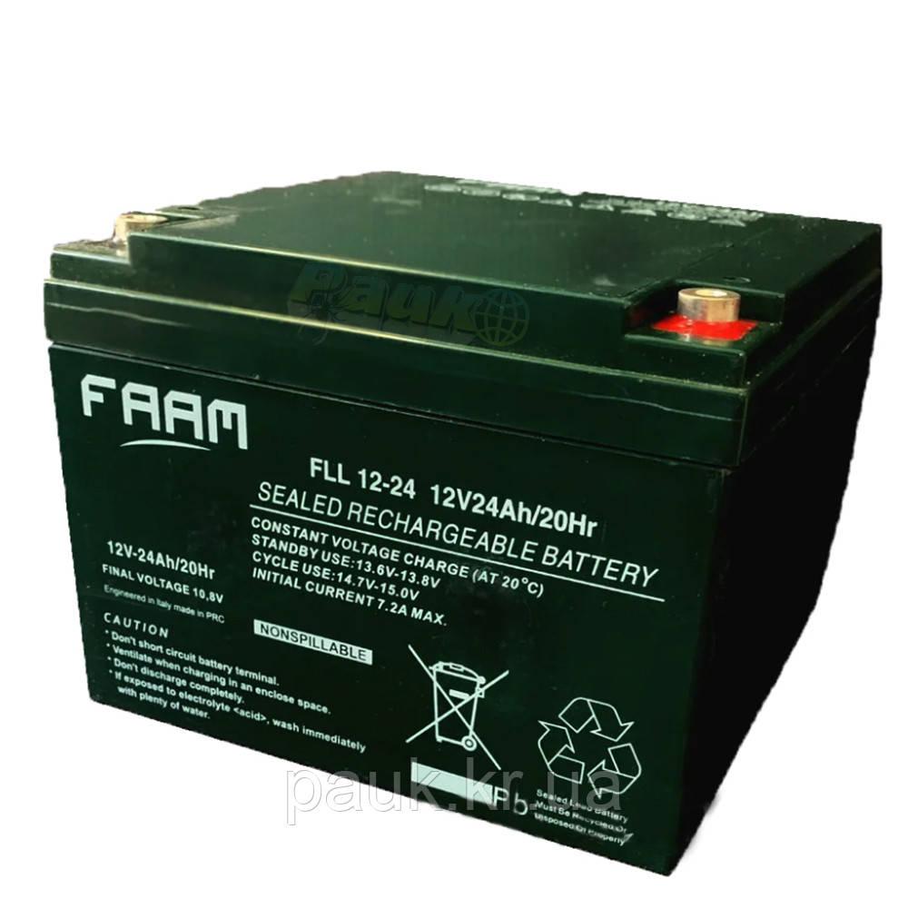 Акумуляторна батарея FAAM FLL 12-24, акумулятор стаціонарний