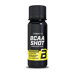 Амінокислоти BioTech USA BCAA Shot 20Х60 ml