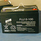 Акумуляторна батарея FAAM FLL 6-100, свинцево-кислотний акумулятор, фото 2