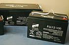 Акумуляторна батарея FAAM FLL 6-100, свинцево-кислотний акумулятор, фото 3