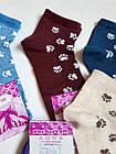 Шкарпетки жіночі вставка сіточка бавовна стрейч Україна р. 23-25.Від 10 пар по 6,50 грн, фото 8