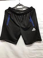 Шорти чоловічі трикотажні Adidas розмір 48-56, колір уточнюйте при замовленні, фото 1