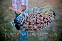 Рол для збору волоського горіха, фото 2