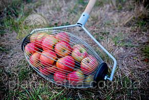 Ролл для сбора яблок, плодосборник