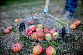 Ролл для сбора яблок, плодосборник, фото 2