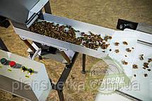Інспекційний стіл для сортування волоського горіха, насіння і тд, фото 3