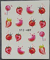 Наклейка для ногтей STZ-489