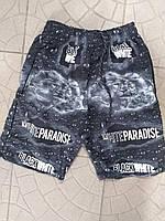 Шорты мужские трикотажные Paradise размер норма 44-50,цвет уточняйте при заказе, фото 1
