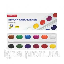 Фарби акварельні медові Erich Krause, 12 кольор., в картон. пеналі, EK 50586