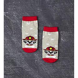 Носки демисезонные средние для мальчика, Долматинец, V&T (размер 12-14)