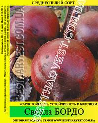 Семена свеклы «Бордо» 100 г