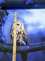 "Стрейч кулир принт ""Сова в лесу"" купон 100х180 см. (диджитал), фото 1"