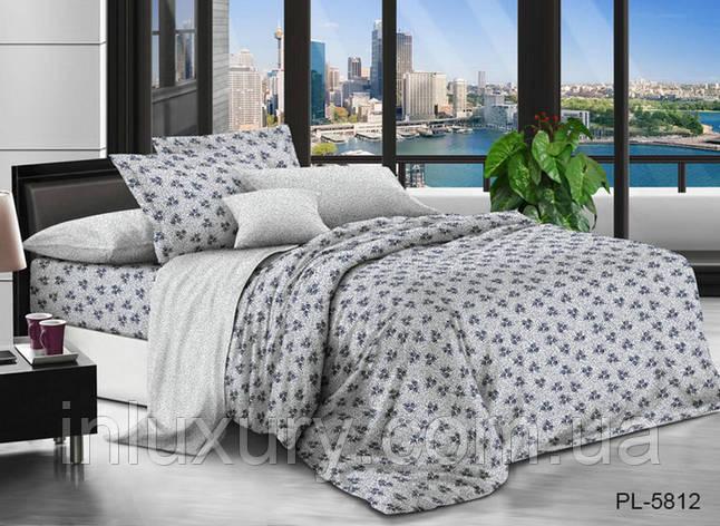 Комплект постельного белья с компаньоном PL5812, фото 2