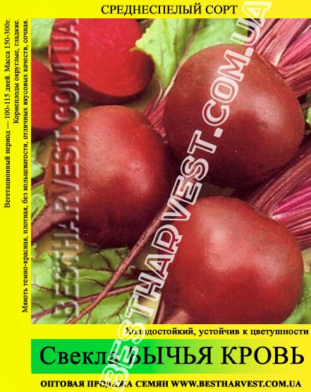 Семена свеклы «Бычья Кровь» 0.5 кг