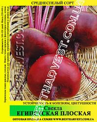 Семена свеклы «Египетская Плоская» 100 г