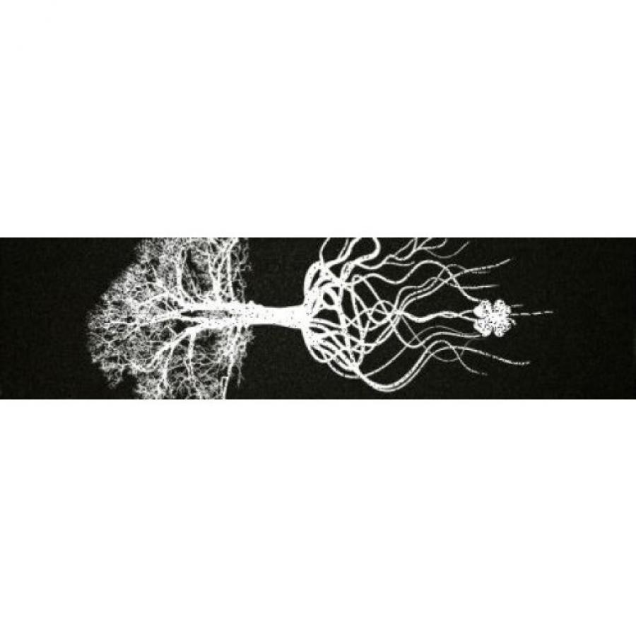 Наждак гриптейп для трюкового самоката Lucky Deep Roots Griptape