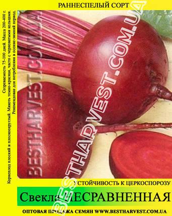Семена свеклы Несравненная 0.5 кг, фото 2
