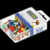 Кнопки кольорові пластикові головки 100 шт в пласт коробці