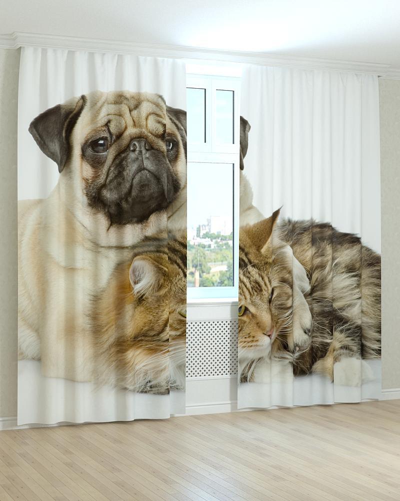 Фотошторы собака и кошка