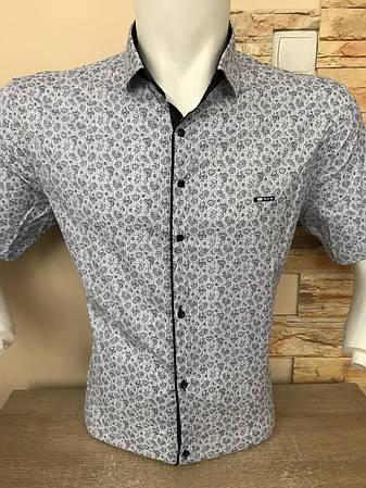 Чоловіча сорочка з коротким рукавом Paul Jack з принтом, фото 2