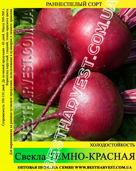 Семена свеклы Темно-красная Округлая 0.5 кг