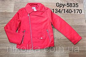 Куртки кожзам для девочек оптом, Glo-story, 134/140-170 рр., арт. GPY-5835