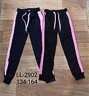 Спортивные штаны для девочек оптом, Sinsare, 134-164 см,  № LL-2902