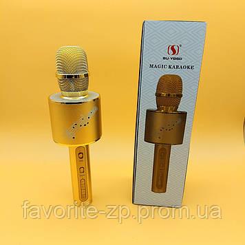 Беспроводной микрофон DM Karaoke YS 66 + BT