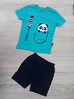 """Детский костюм футболка+шорты """"PANDA"""" для мальчика от 9 мес-3 лет,цвет уточняйте при заказе, фото 1"""