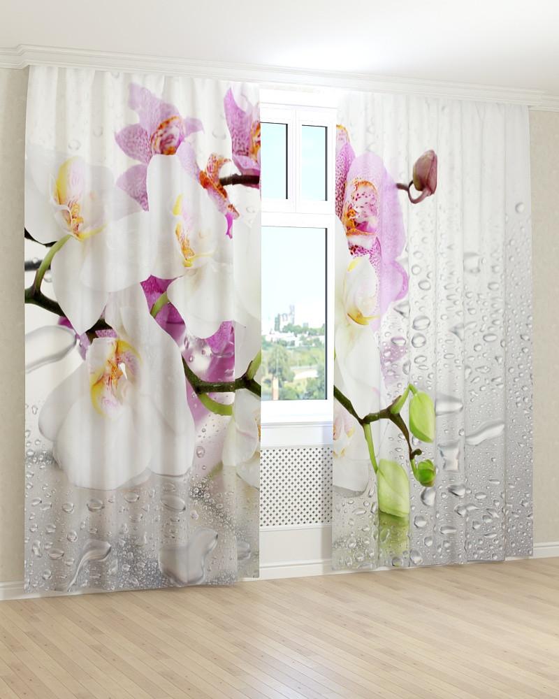 Фото штори орхідея на склі