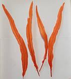 Пір'я півня Колір Помаранчевий 28-35см, фото 3