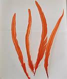 Пір'я півня Колір Помаранчевий 28-35см, фото 4