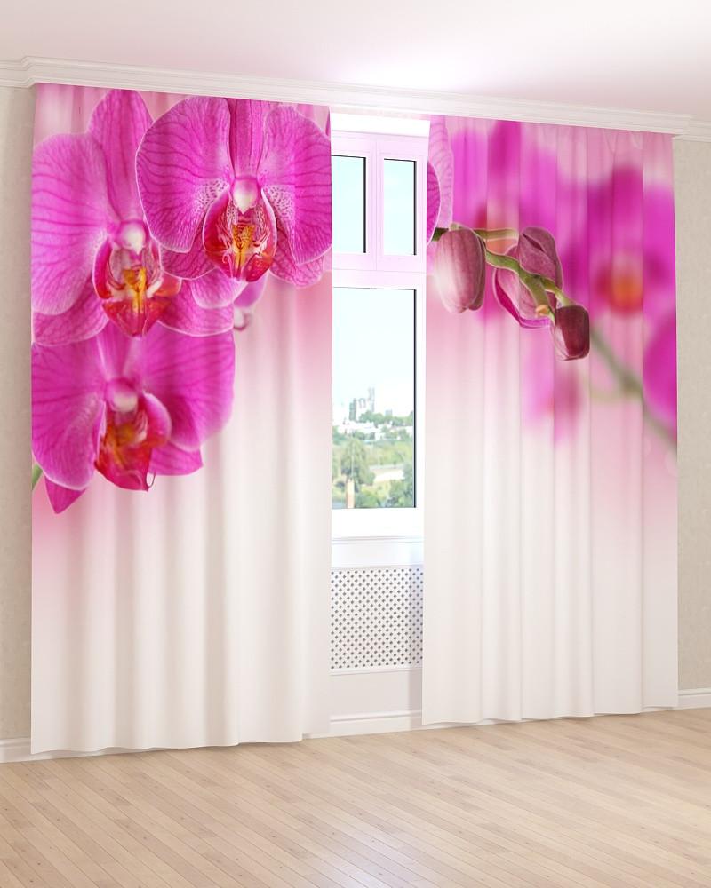 Фото штори темно-рожева орхідея