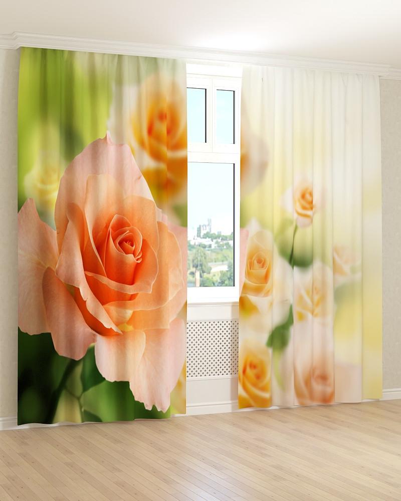 Фото штори світло-помаранчеві троянди