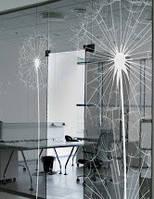 Межкомнатные стеклянные двери в комплекте с перегородкой 3000мм х 3000мм, 10мм толщина, стекло тонированное