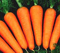"""Семена - Морковь""""Абако F1""""  ТМ  """"Seminis"""",Голландия 200 000 семян 1,4-1,6"""