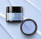 Успокаивающий крем с азуленом Neogen Sur.Medic Azulene Soothing Cream 50 ml, фото 3