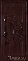 Дверь входная металлическая Маэстро 104