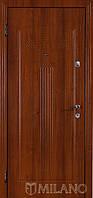 Дверь входная металлическая Маэстро 109