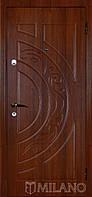 Дверь входная металлическая Маэстро 114