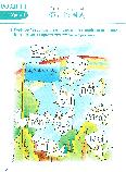 Весела китайська мова 2 Робочий зошит з китайської мови для дітей Кольоровий, фото 4