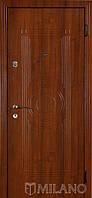 Дверь входная металлическая Маэстро 138