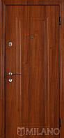 Дверь входная металлическая Маэстро 149