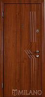 Дверь входная металлическая Маэстро 511