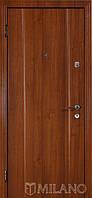 Дверь входная металлическая Маэстро 702