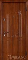 Дверь входная металлическая Маэстро 732