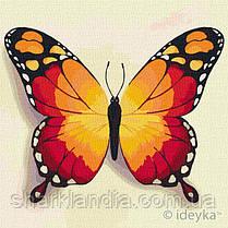 Картина по номерам Идейка  Оранжевая бабочка 25х25 KHO4210