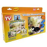 Лежанка для котів і кішок на вікно, балкон. Полиця для домашніх тварин Sunny Seat Сани звт до 22 кг, фото 7