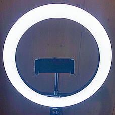Кольцевая лампа 26 см со штативом на 2м Ring Fill Light кольцевой свет лампа для селфи лампа для тик тока, фото 2