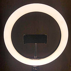 Кольцевая лампа 26 см со штативом на 2м Ring Fill Light кольцевой свет лампа для селфи лампа для тик тока, фото 3